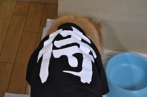 2011_05_25_002.jpg