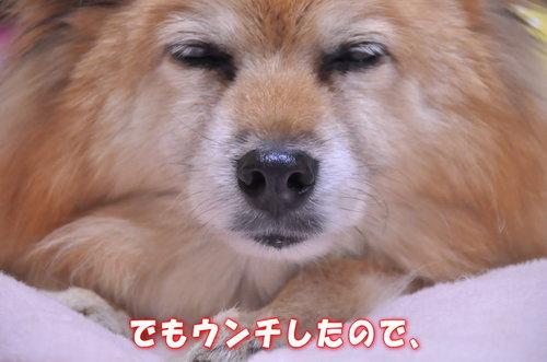 2011_12_28_002.jpg
