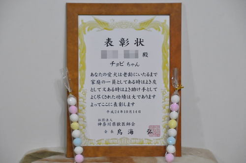 2012.10.14_testimonial_001.jpg