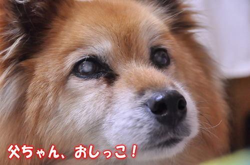 2012_01_30_003.jpg