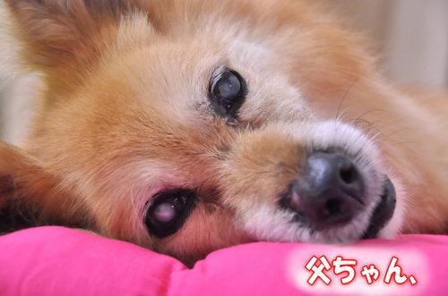 2012_07_23_001.jpg
